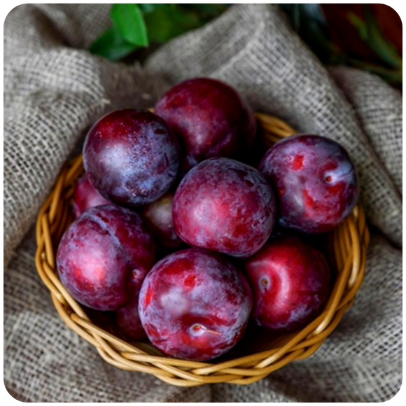 Organic Ebony Rose Plums, 1.5 lbs