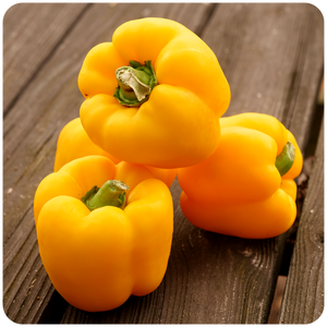 Organic Yellow Bell Peppers, 1.5 lbs