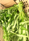 AA035 Organic Water Spinach/ Ong Choy, 2 bunches