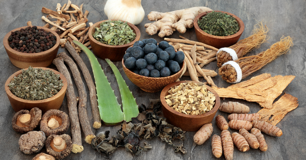adaptogens-for-healthy-living