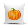 Drawn Pumpkin Pillow Cover