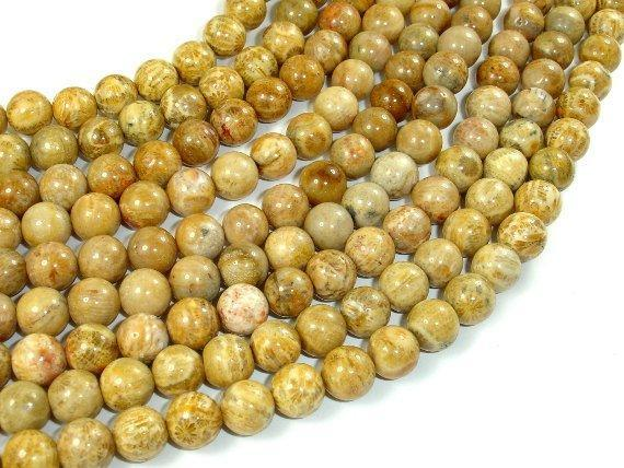 Fossil Coral Beads, 8mm Round Beads-BeadBeyond