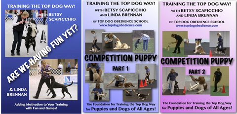 DVD 3 Pack - Competition Puppy Parts 1 & 2 and Are We Having Fun Yet