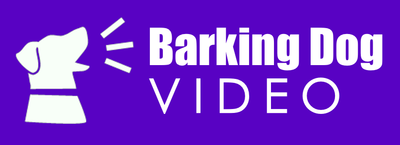 Barking Dog Video