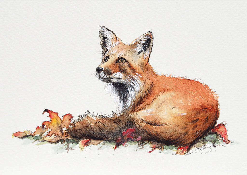 Red Fox Laying - Blank Greeting Card