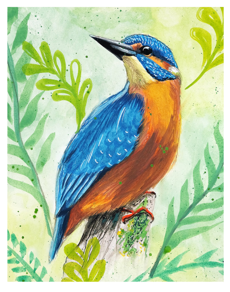 Kingfisher - Art Print