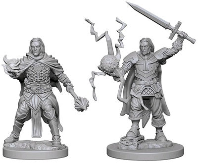Pathfinder Deep Cuts Unpainted Miniatures Human Male Cleric