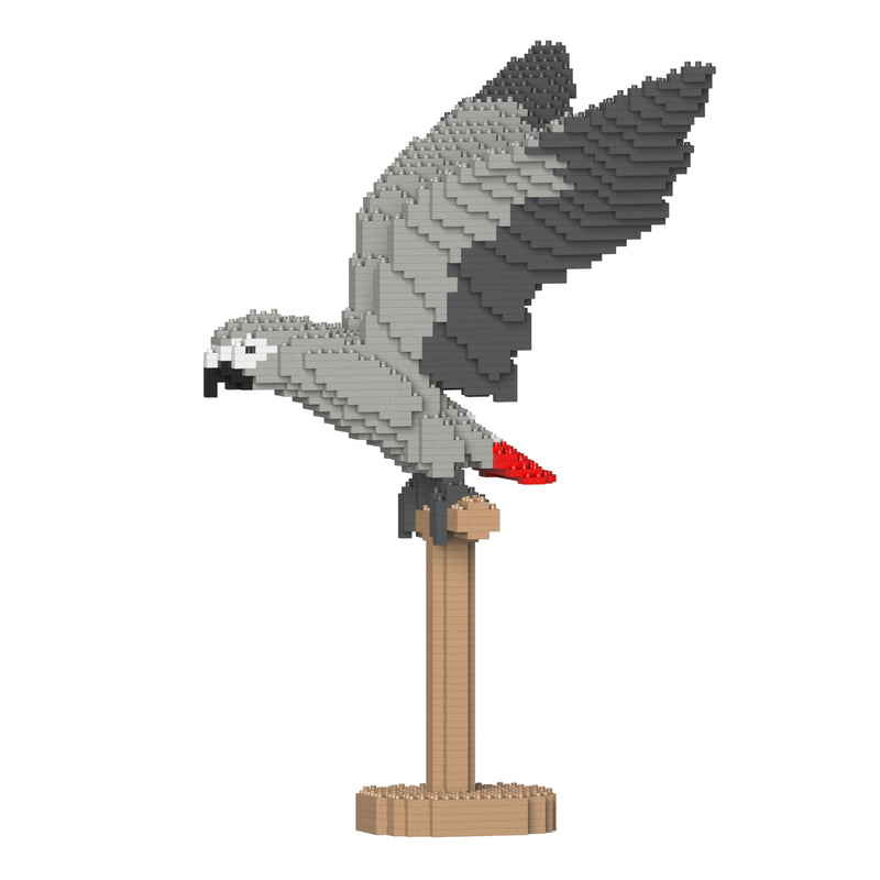 Jekca - African Grey - Small (02S)