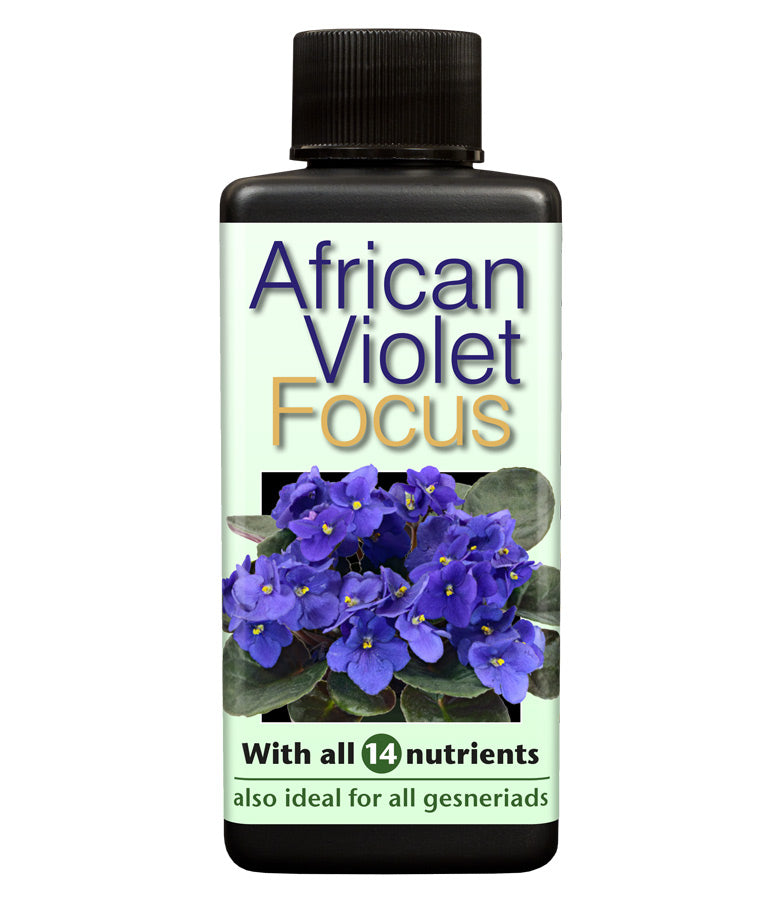 African Violet Focus 100ml