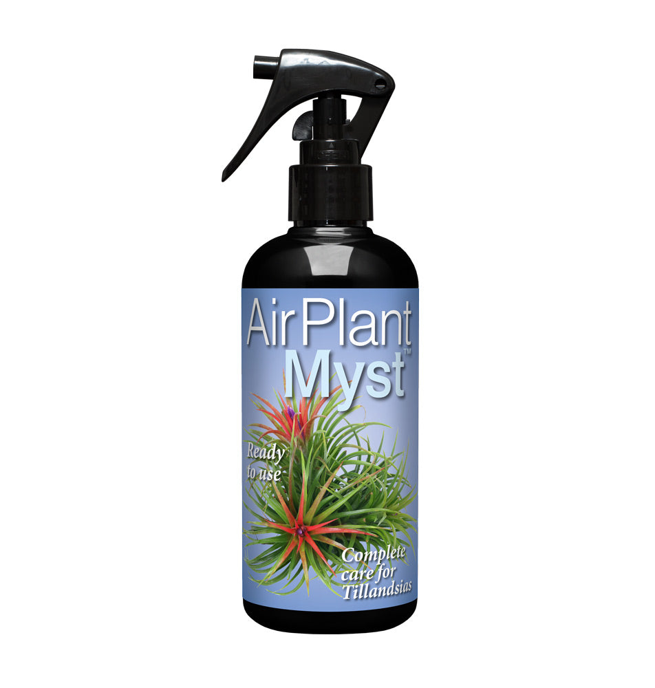 Airplant Myst 300ml