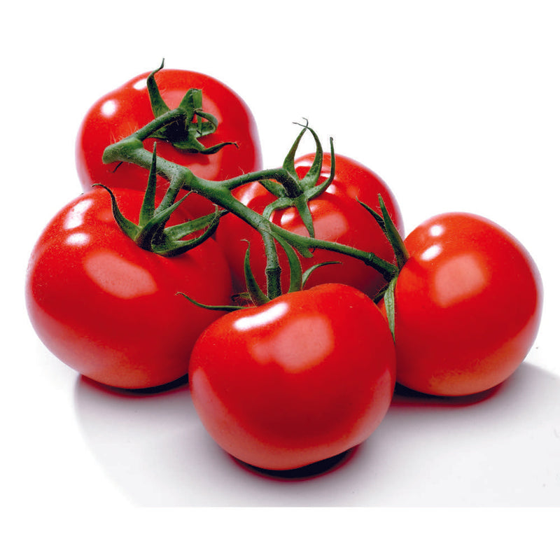 Greenhouse Truss Tomatoes | Tomatoes