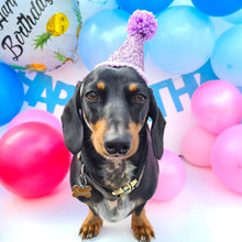 Load image into Gallery viewer, Mega Barkday Pack