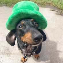 Load image into Gallery viewer, PLAY Mutt Hatter Leprechaun Hat Toy