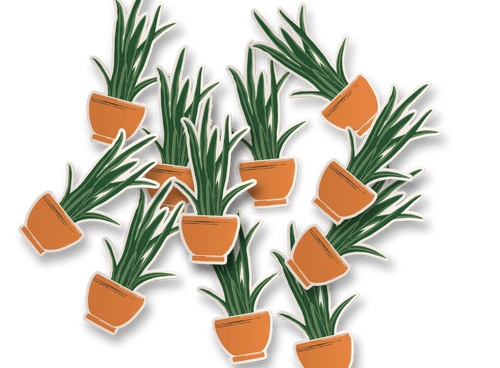 snake plant vinyl sticker in ceramic planter