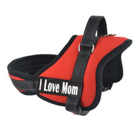 Harness for Dogs