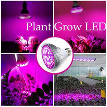 Load image into Gallery viewer, E27 Full Spectrum LED Plant Grow Lights 18W/28W LED Lights 120 Wide Angle Lighting Plants Growing Lamp