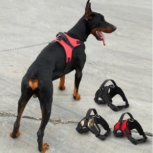 Fashion Dog Pet Explosion-proof Traction Chest Soft Adjustable Harness Vest Collar Hand Strap for Pet Walk Out Harness