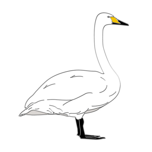 Whooper swan pin badge
