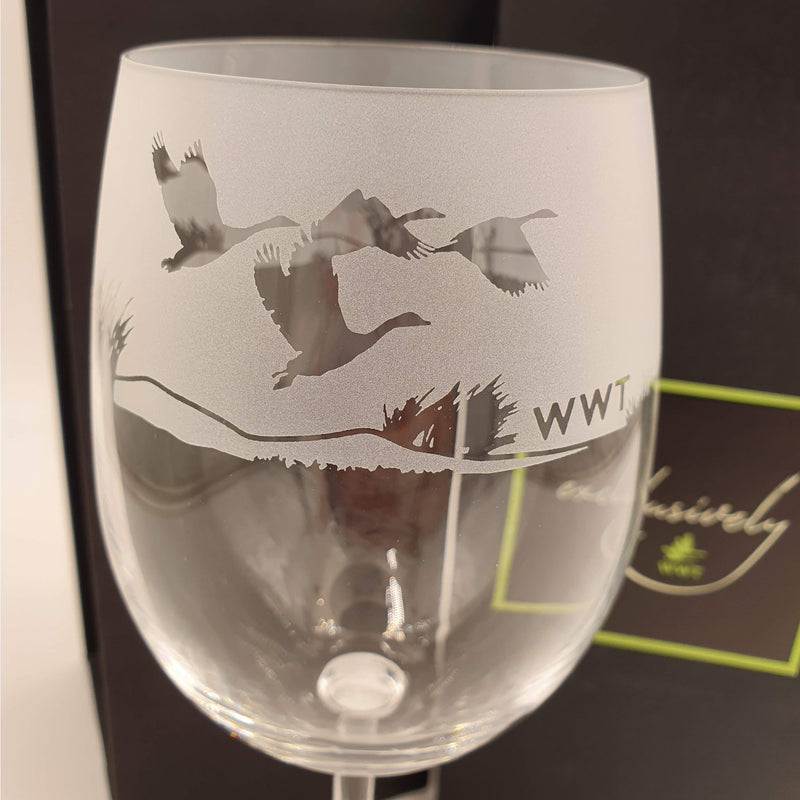 Wine glass, swan in reeds