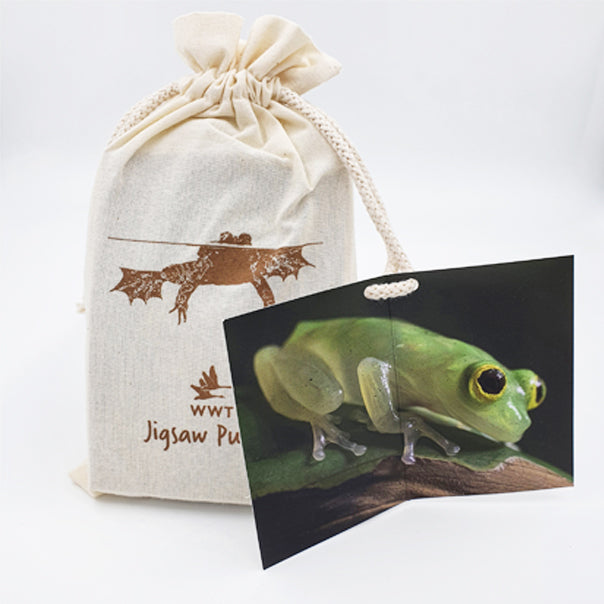 Frog jigsaw puzzle (204 piece)