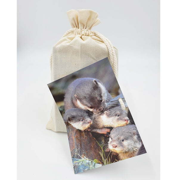 Otter jigsaw puzzle (204 piece)