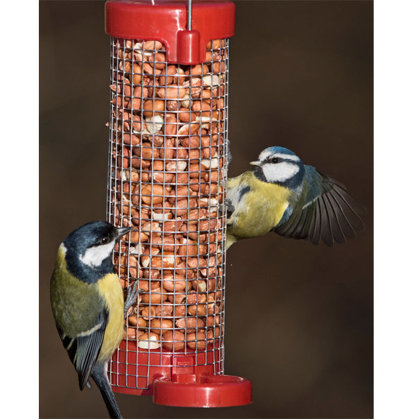 Get Set Go!™ Peanut Feeder