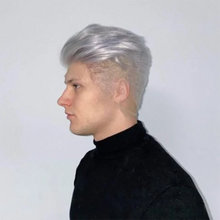 Load image into Gallery viewer, Silver gray men's wig