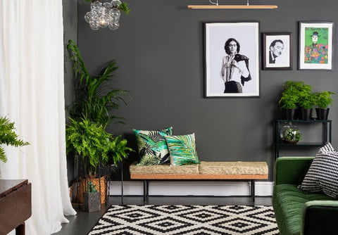 Monochrome living room with green accents, Colourtrend OysterCatch 0585