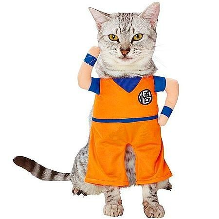 Dragon Ball Saiya-cat Cosplay Pack