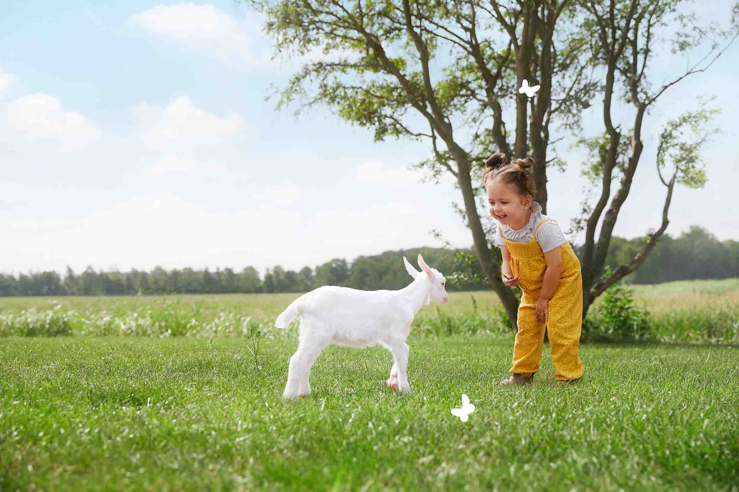 Why goatmilk?