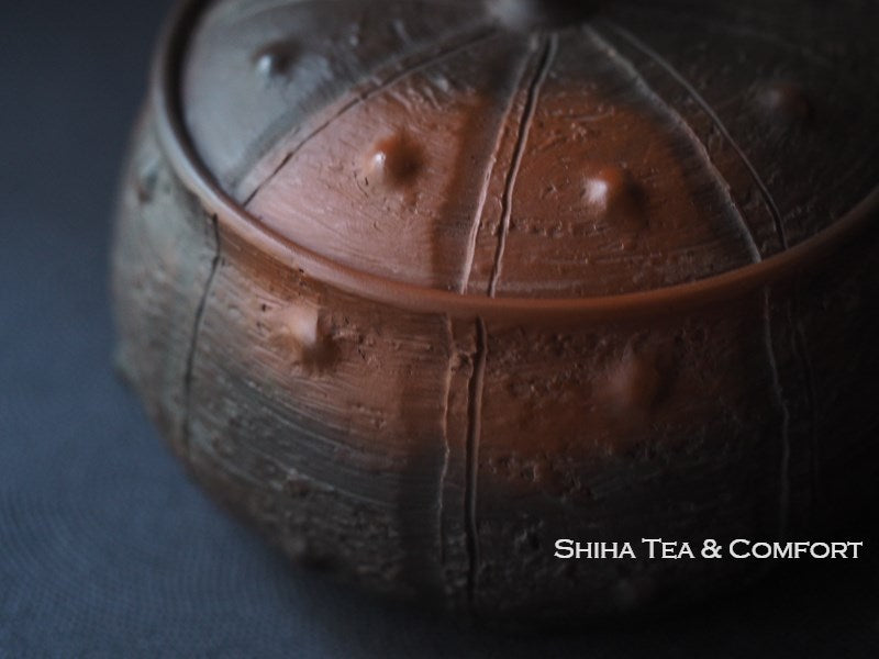 Motozo Rivet Red Clay Smoked Teapot 素三朱黑