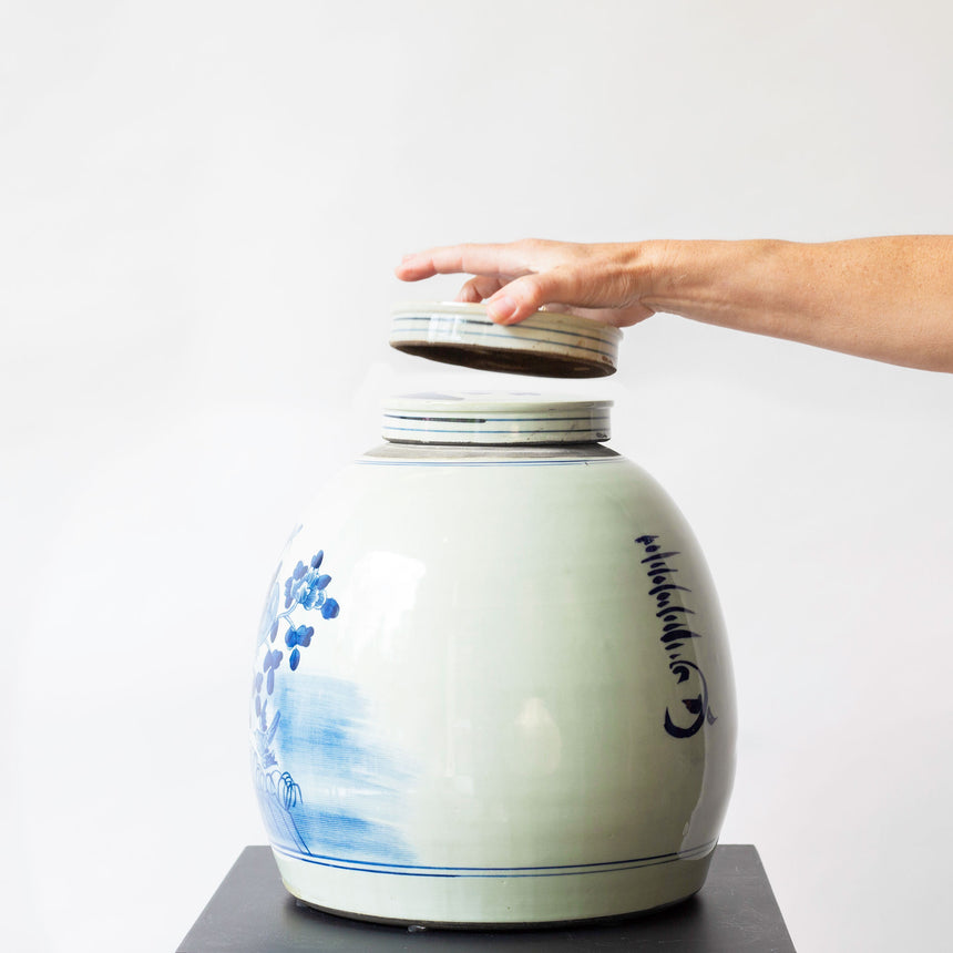 CHINESE VASE DOME