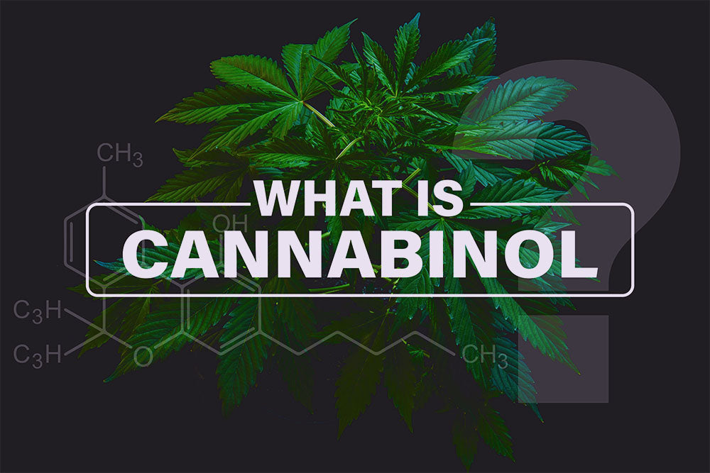 What is Cannabidiol (CBD)