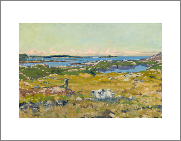 Early Morning, Connemara Canvas Print