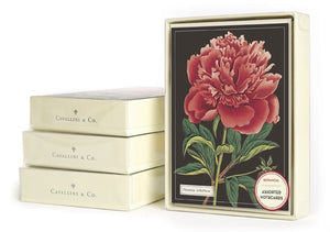 A stack of cream boxes with clear lids. One stands upright showing a card. It is black with a large pink-red flower and green leaves.