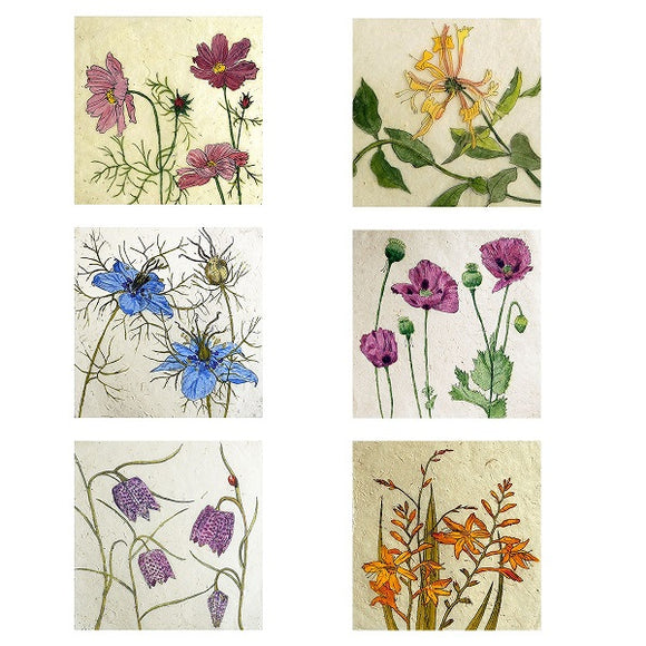 Six cards with different drawings of flowers; pink-purple flowers, a yellow flower, two blue flowers, pink-purple flowers with unopened buds, purple flowers with a single tiny ladybird, and orange flowers.