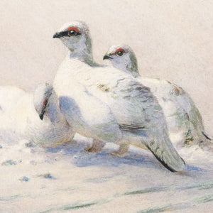 Ptarmigan Winter Christmas Cards