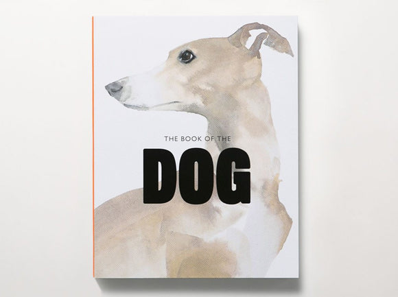 A white background with a painting of a light brown dog. The title is in the centre of black letters.