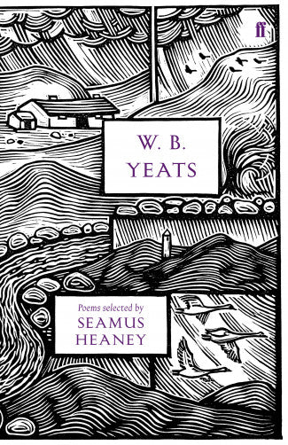 A black and white line illustration of an Irish rural scene, split into different sections. There are hills, a cottage, a round tower, a river, and flying swans. The title is in purple letters in a white box.