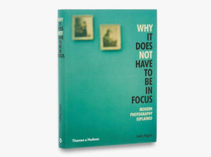 A sage green background with two small out of focus paintings in the top left. The title goes down along the full right side of the cover in black letters with 'why' and 'not' in white.