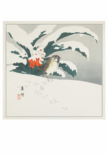 Biho Bird in Snow Christmas Cards Box