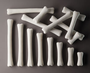 Dinosaur Bones Match and Measure Set