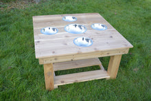 Load image into Gallery viewer, Outdoor Messy Activity Table With 5 Metal Bowls