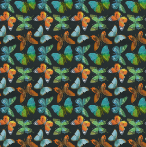 STOCK Rustic Butterflies (orange-vert) - CL 250 gsm