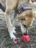 MKB Heart on a String Ultra-Durable Rubber Tug Toy - Large - Red