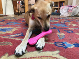 MKB Bone Ultra Durable Nylon Dog Chew Toy for Aggressive Chewers- Pink