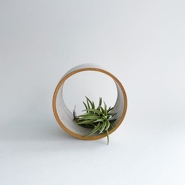 Speckled Air Plant Holder
