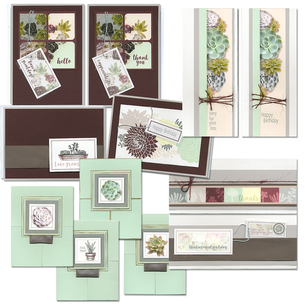 Succulents Greetings to Go card kit