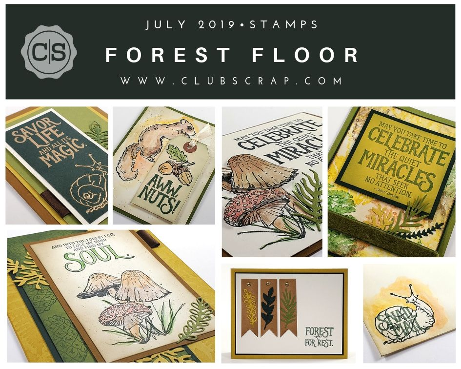 Forest Floor Spoiler - Stamps by Club Scrap #rubberstamps #stamps #clubscrap #handmadecard