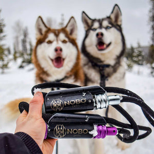 Two Leashes in Snow